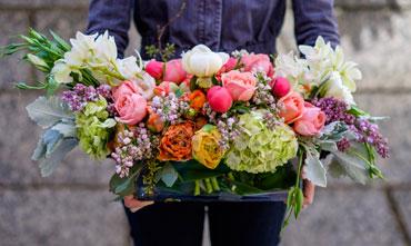 Piante e fiori vendita al dettaglio fioreria brembati for Vendita semi fiori