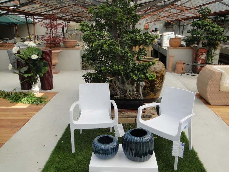 fioreria-brembati-piante-fiori-vasi-16