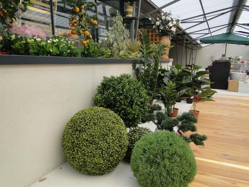 fioreria-brembati-piante-fiori-vasi-19