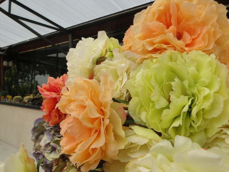 fioreria-brembati-piante-fiori-vasi-20
