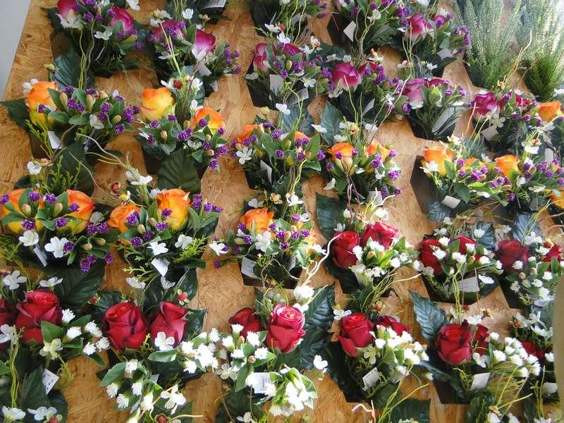 fioreria-brembati-piante-fiori-vasi-25