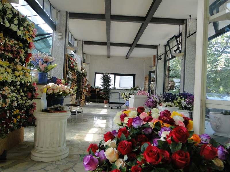 fioreria-brembati-piante-fiori-vasi-28