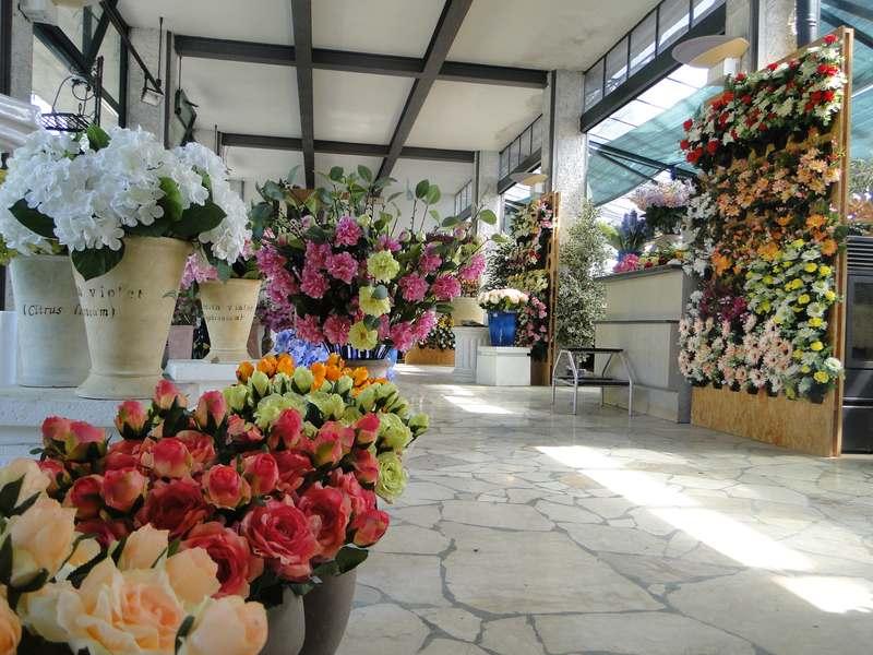 fioreria-brembati-piante-fiori-vasi-30