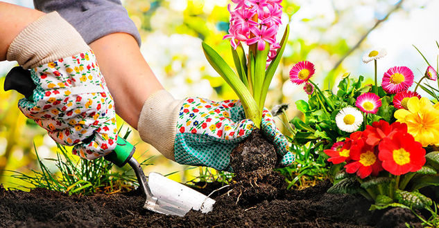 giardinaggio marzo