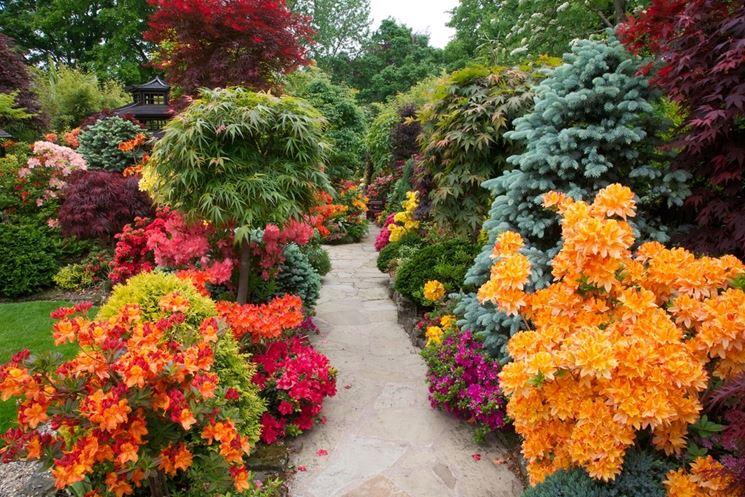 lavori-del-mese-giardino-giugno_NG3