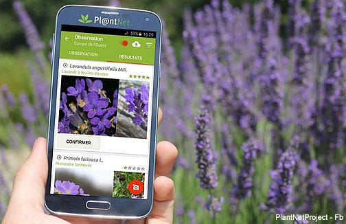 plantnet_app504